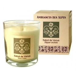 Bougie parfumée Sabot de Vénus