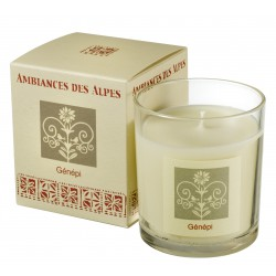 Scented candle Genepi