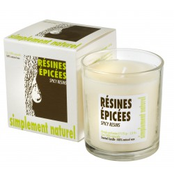 Scented candle Spicy resins