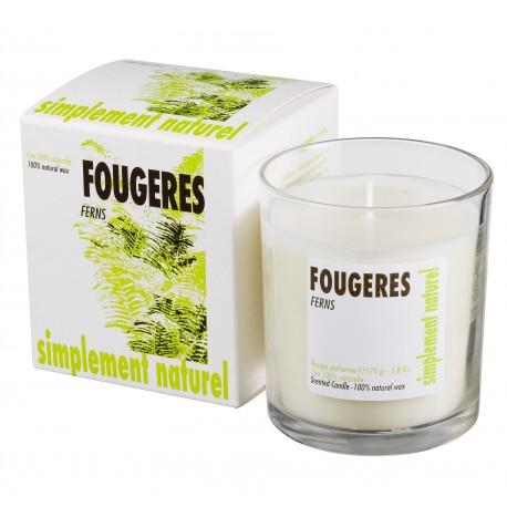 Bougie parfumée Fougères