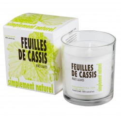 Bougie parfumée Feuille de Cassis